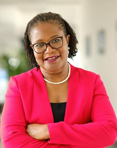 Professor Olayinka David-West